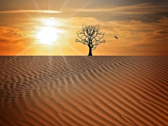 sequías cambio climático