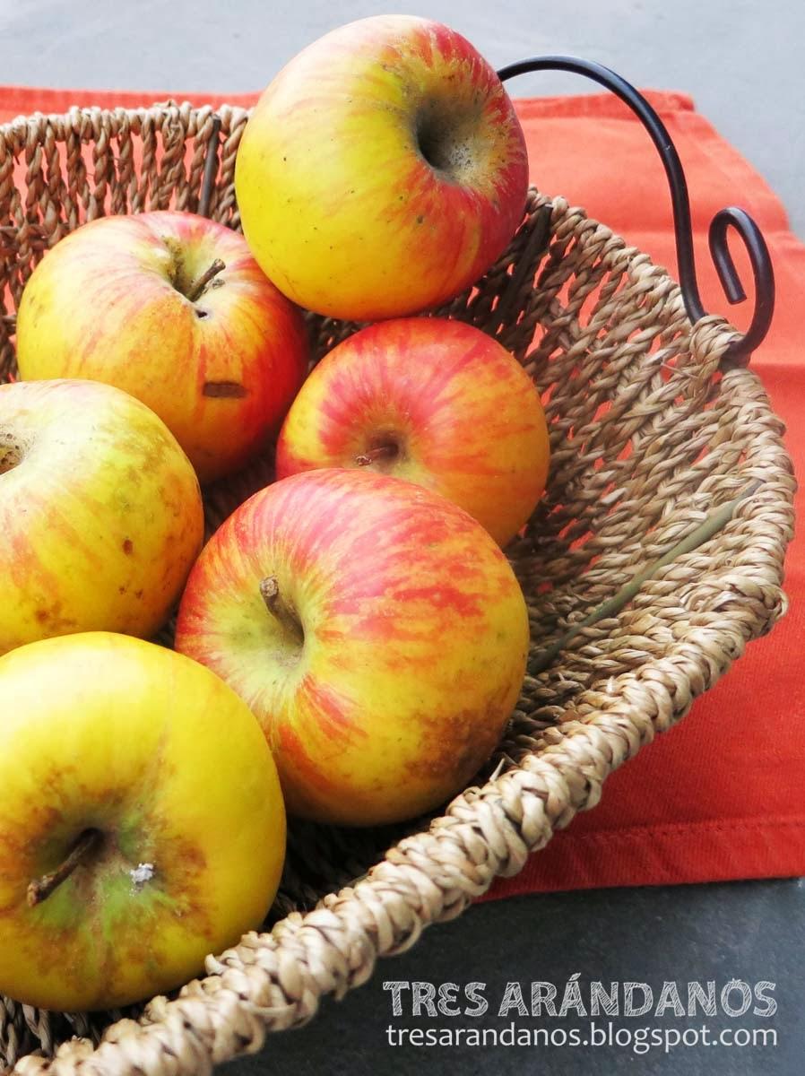 cesta de manzanas topaz