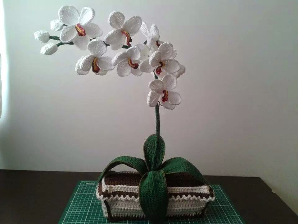 orchidee uncinetto