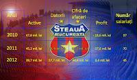 Indicatori financiari Steaua