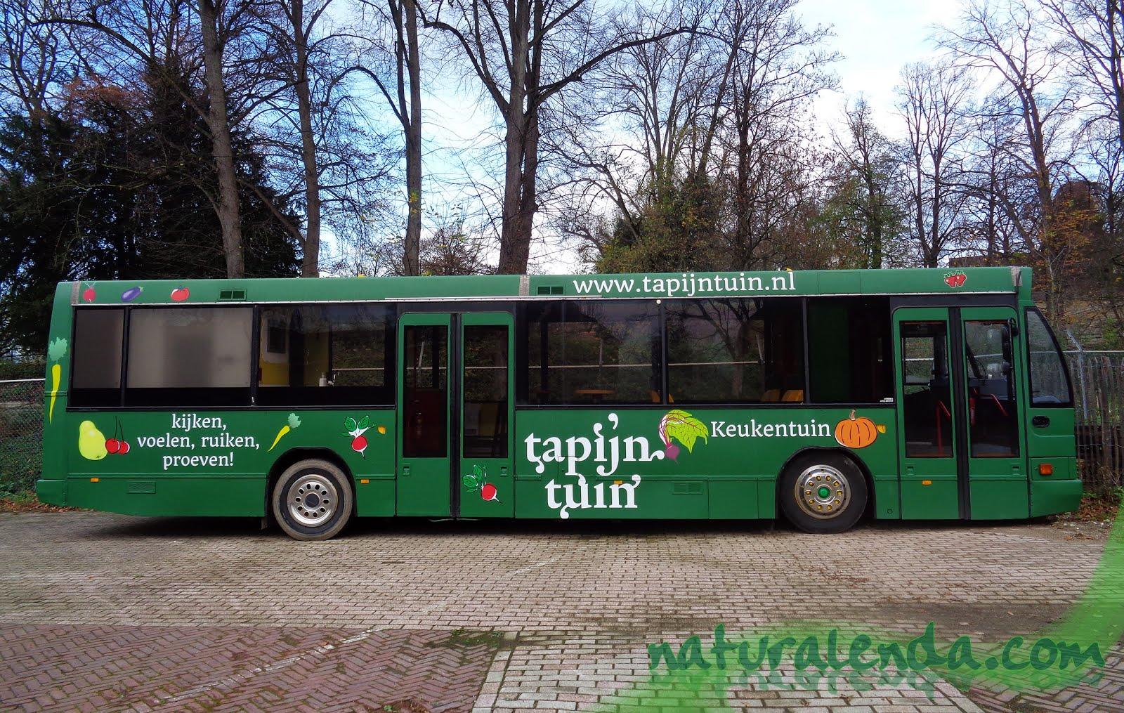 el autobus del huerto