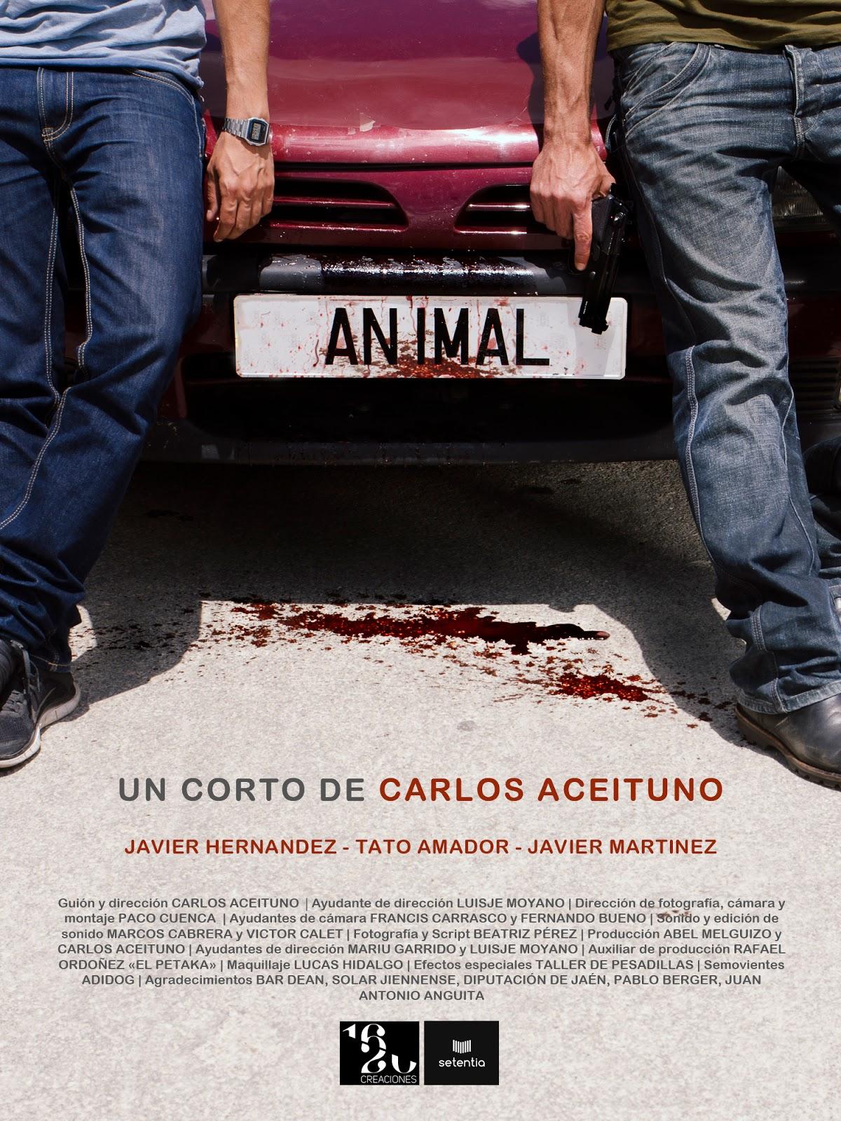 El Diván Azul: cartel corto ANIMAL