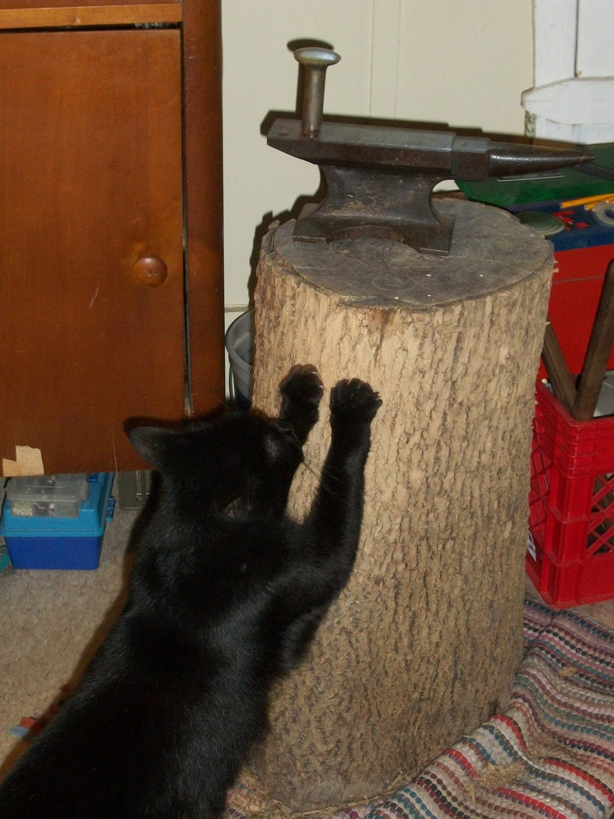 Concha 39 s cauldron homemade scratching post for Homemade cat post