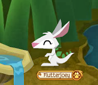 how to get a pet joey on animal jam