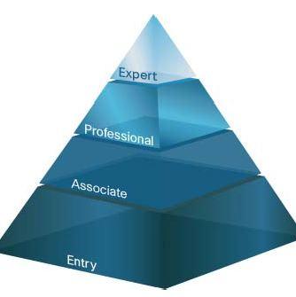 download Менеджмент организации: учебные и производственные практики.