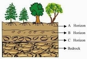 Get to know about Soil (Ncert / Cbse Solutions & Revision Notes), Chapter Summary\, CBSE / NCERT Revision Notes, CBSE NCERT Class VI (7th) | Science, CBSE NCERT Solved Question Answer, CBSE NCERT Solution.