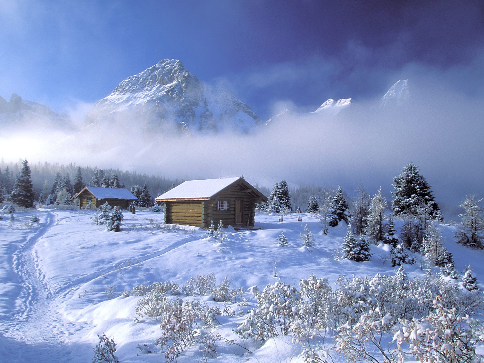 winter wallpapers blu ray wallpapers 2012 1080p
