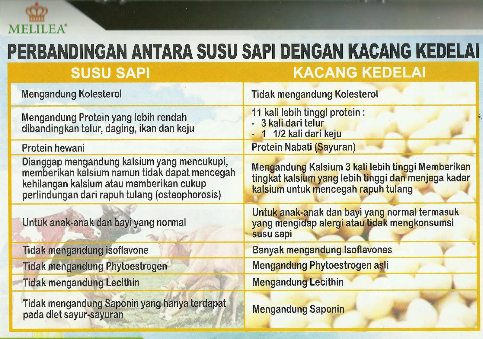 Sehat Cantik Sukses Produk Melilea Susu Kedelai Organik Serbuk Bubuk Berisikan Protein Nabati Alami Dan Phytonutrient Yang Hanya Terdapat Pada Kacang Adalah Sumber
