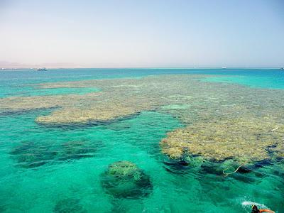 (Egypt) - Sharm el-Sheikh - Tiran Island