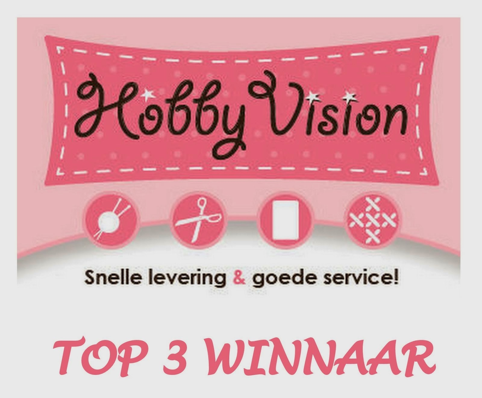 Top 3 winnaar Challenge Hobby Vision