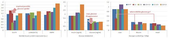 Expression des protéines après la prise lactosérum/Acides aminés et peptides