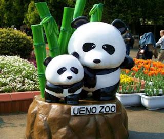 Tempat Wisata Di Tokyo - Kebun Binatang Ueno - Ueno Zoo
