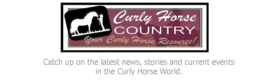 Curly Horse Country Blog