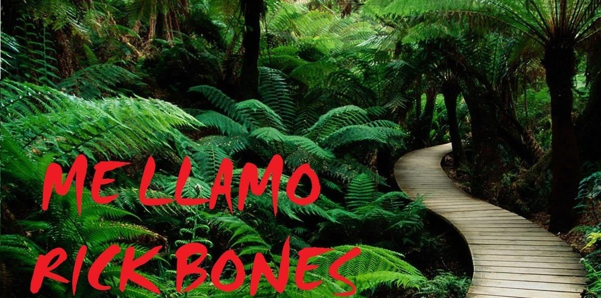 ME LLAMO RICK BONES