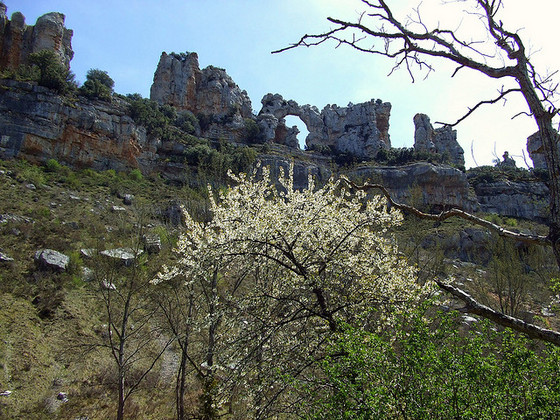 imagen_ebro_burgos_orbaneja_castillo_camellos_erosion_roca