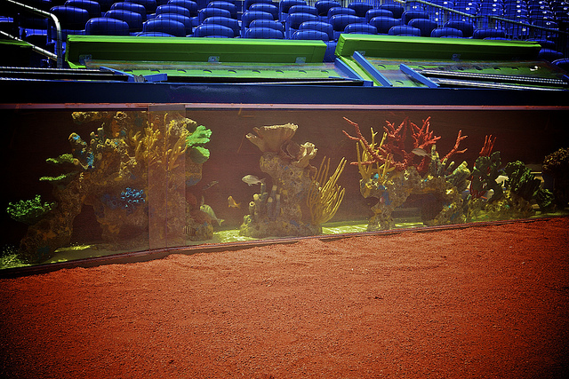 3 roots 4 the home team fiveball 39 s pics of marlins park for Marlins fish tank