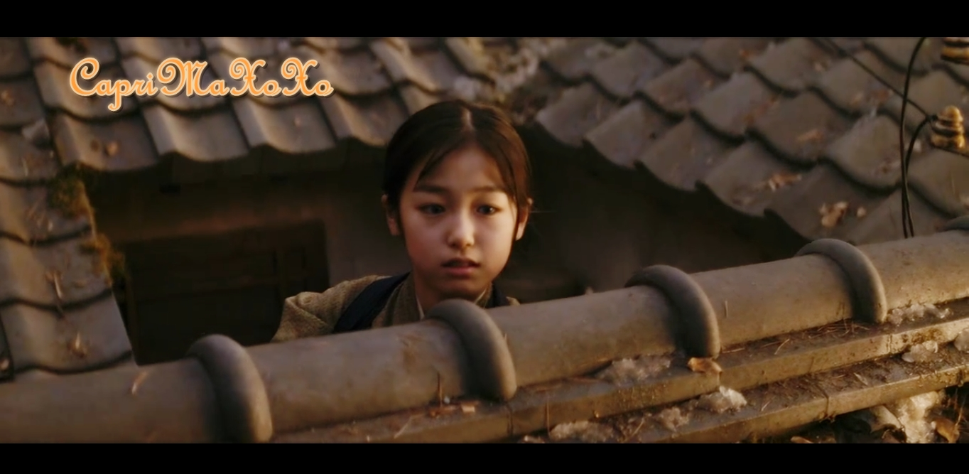 CapRiMax아륀♥ °♪©: MoVie ReView: Memoirs of A Geisha