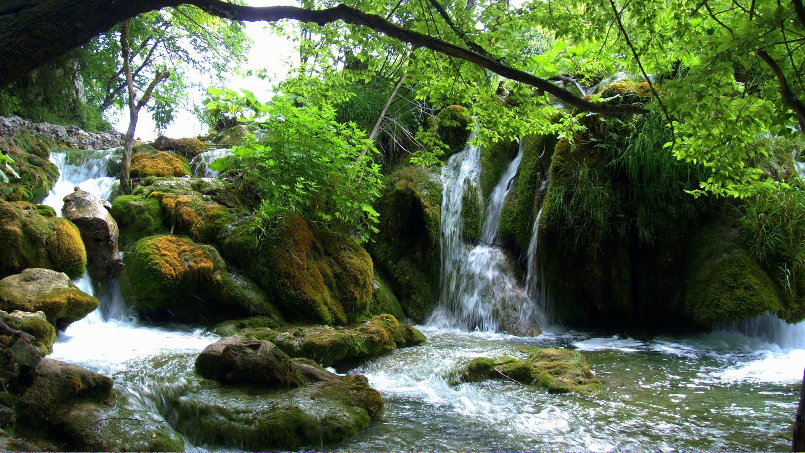 Cascadas Plitvice Jezera En Kaluderovac  Croacia   Imagenes Facebook