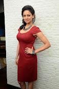 Pooja kumar new glam pics-thumbnail-10