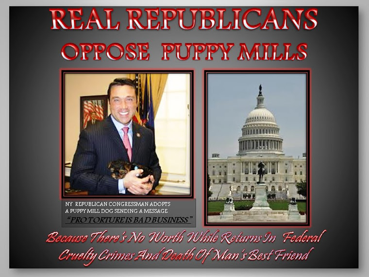 REPUBLICAN AGAINST PUPPY MILLS