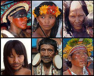 Artigos indigenas