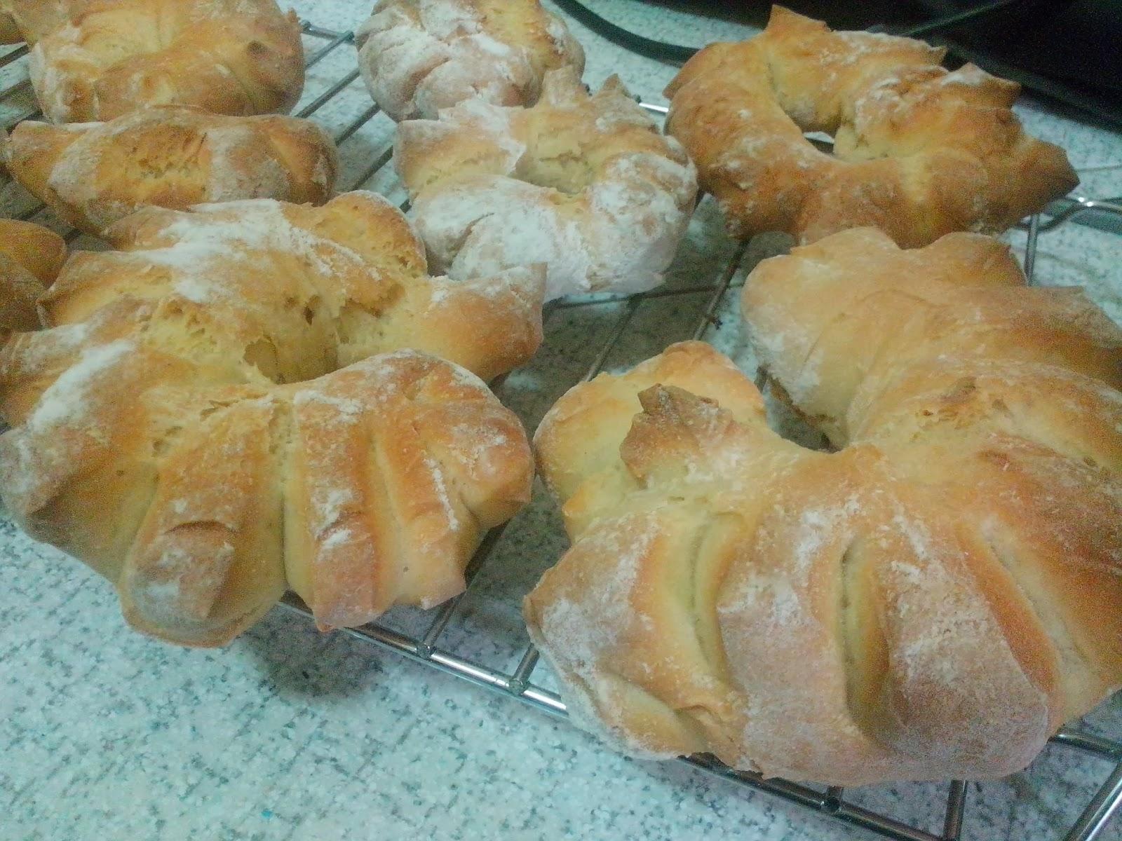 il mio primo lievito madre...il mio primo pane : su coccoi