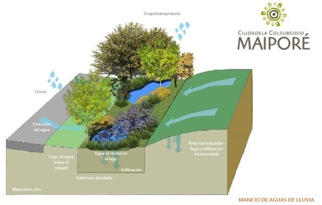 Arquitectobra urbanismo sostenible ciudadela maipor en for Plantas decorativas artificiales bogota