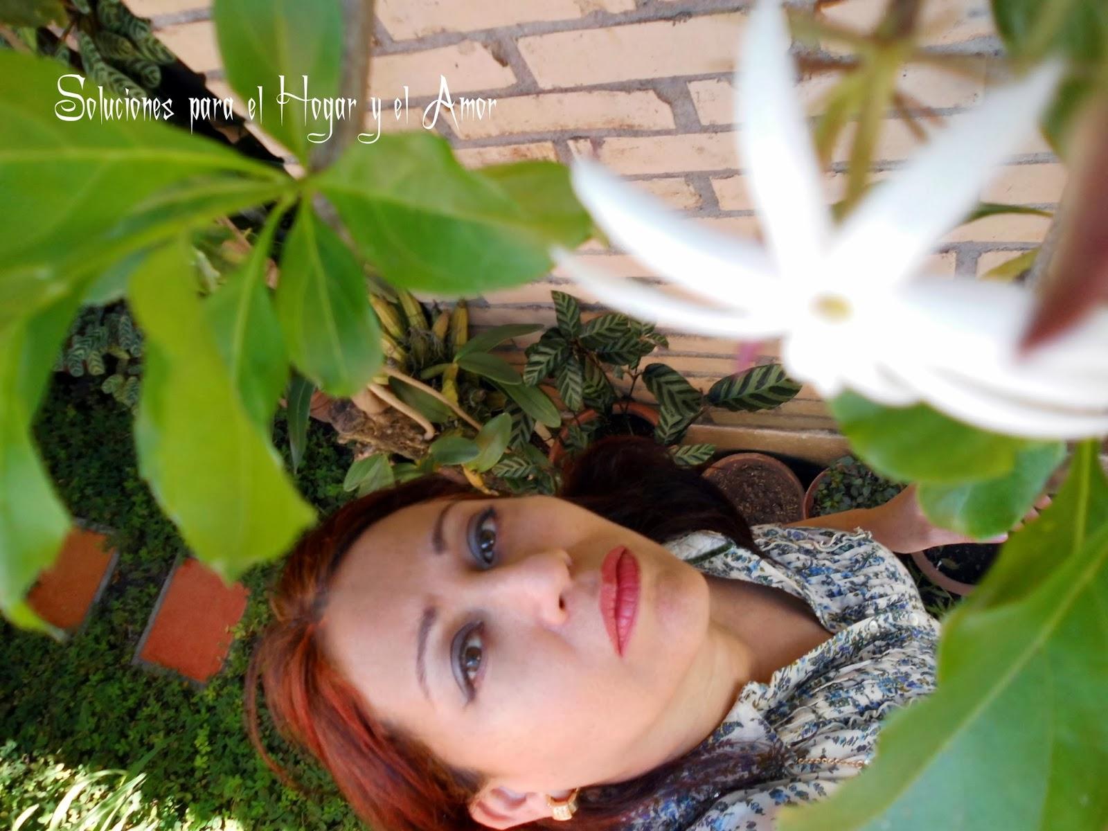 Flor JazmínPoema Cuanto sabe la Flor
