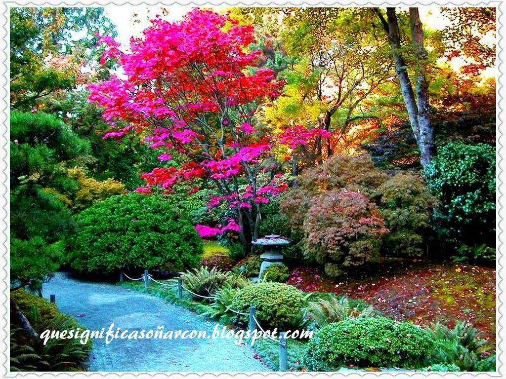Que significa so ar con jardin so ar con jardinero for Que significa plantas ornamentales