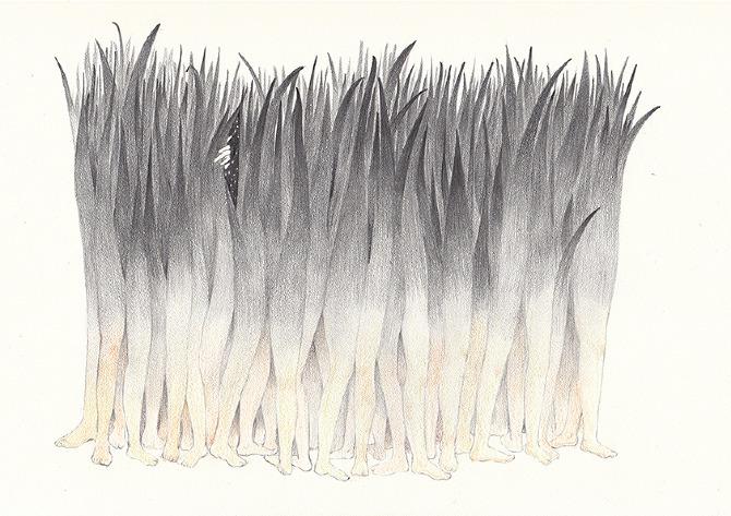 Doctor Ojiplático. Zhang Lu 张璐. Ilustración | Illustration