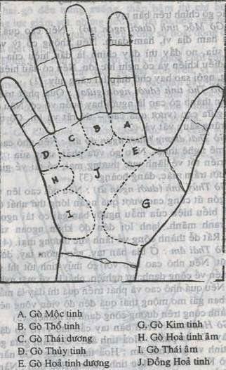 Bói Toán Cách xem bói chỉ tay đường tình duyên-hôn nhân-sự nghiệp trên bàn tay 1