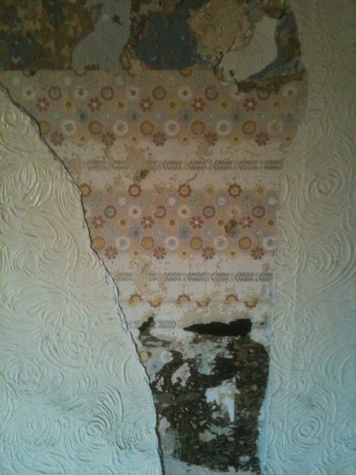 Wallpaper, stripping back through time #lifeonpigrow