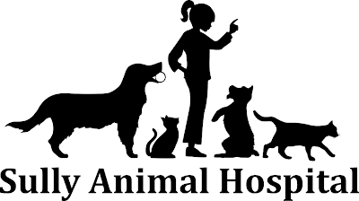 Sully Animal Hospital