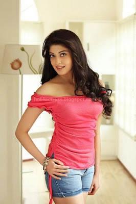 Pranitha hot photos in saree