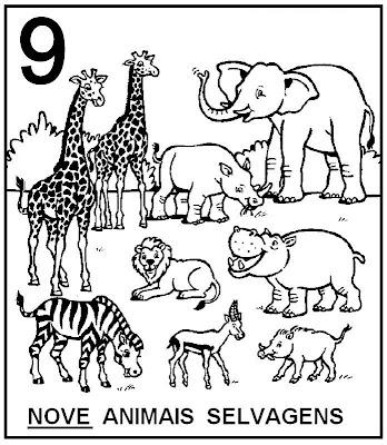 Atividades com Numerais - Animais selvagens para colorir