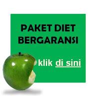 PAKET DIET BERGARANSI