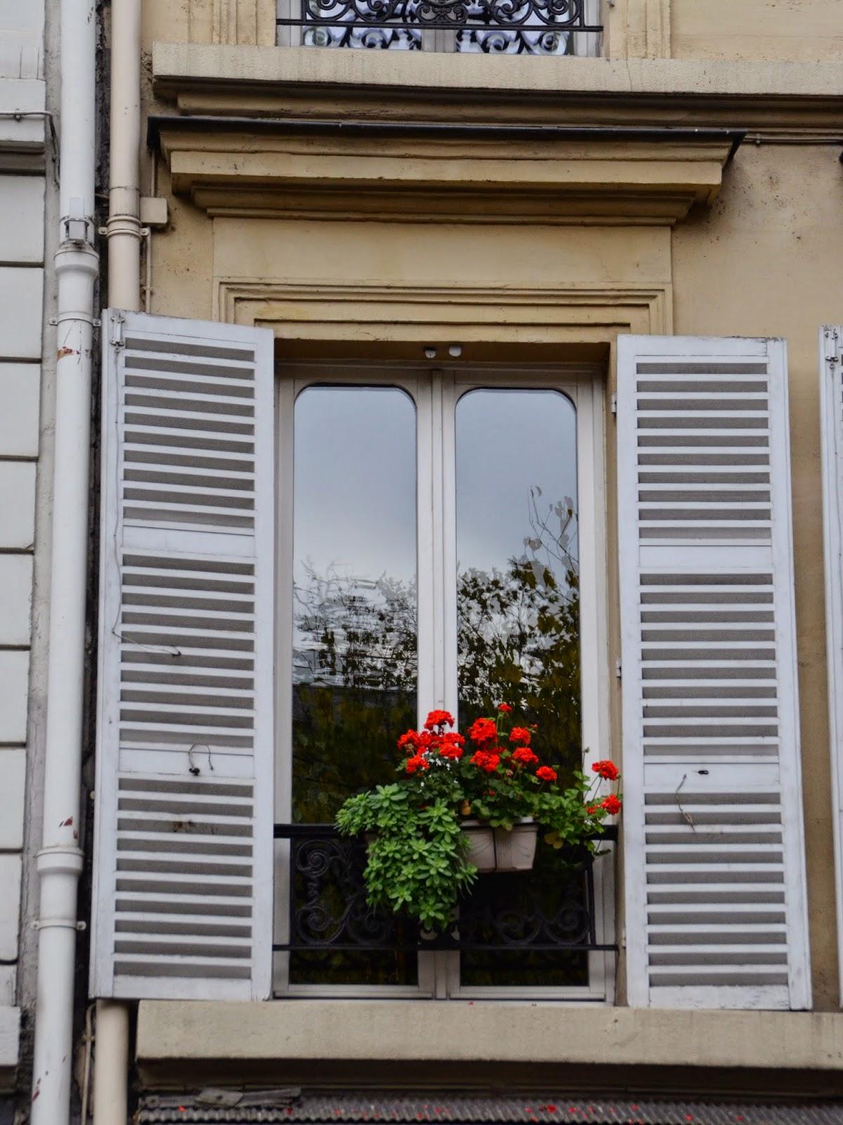 Paris and beyond les fleurs dans la fen tre for Buer dans les fenetre