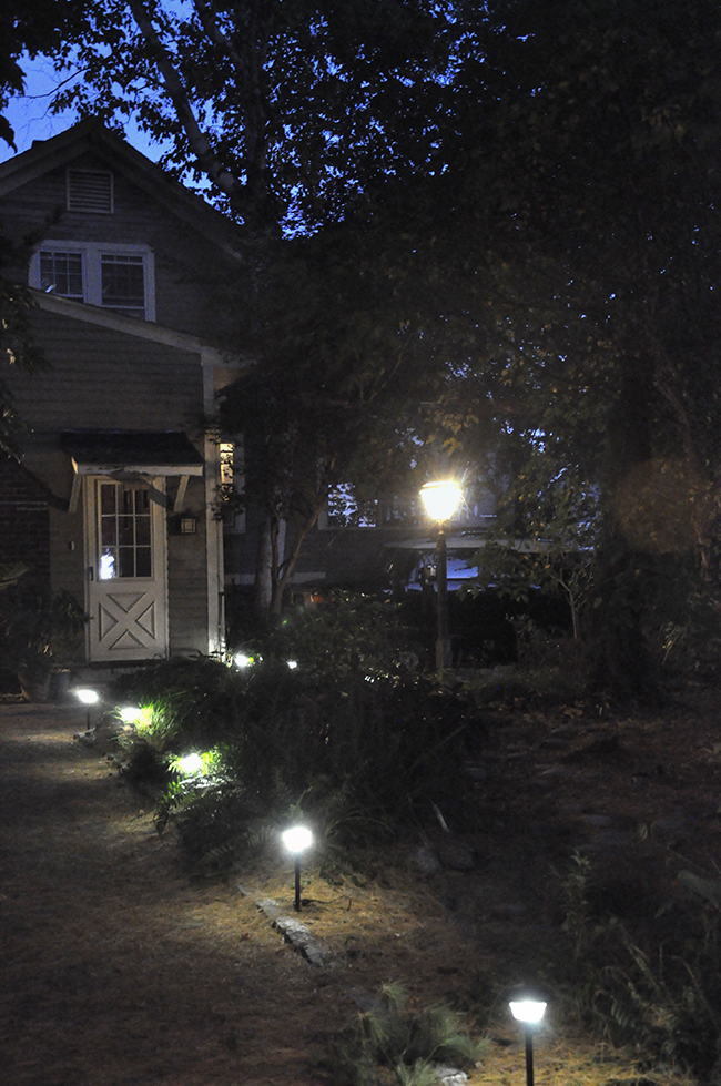 illuminated house lights growing with plants holiday lighting tip make it a year round