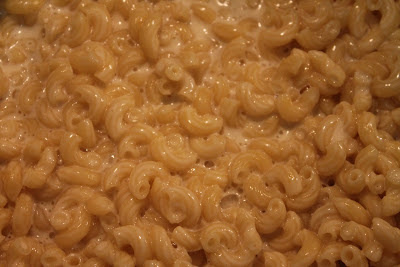 Macaroni mixed with modernist cheddar cheese sauce