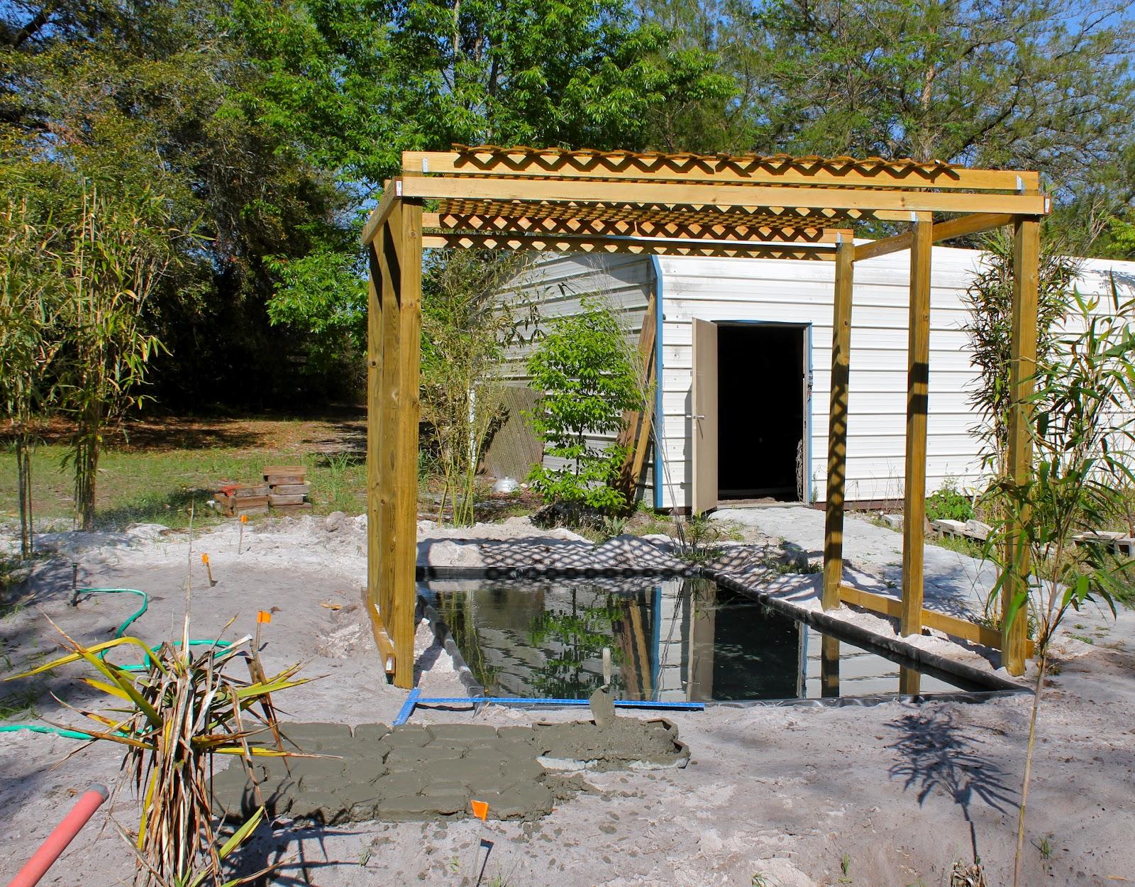 Pond construction concrete phillip 39 s natural world for Concrete pond construction
