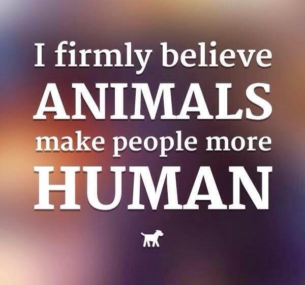 ANIMALS make people more HUMAN!