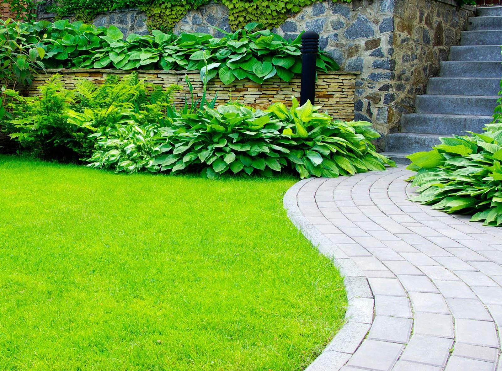 Banco de im genes 9 fotos de jardines dise o exterior for Diseno jardines