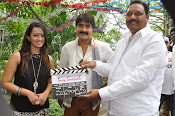 Jalsarayudu movie opening photos-thumbnail-17