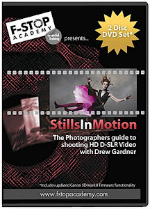Stills in Motion