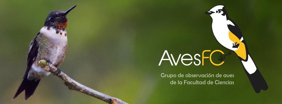 AvesFC