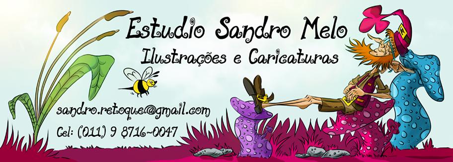 Estudio Sandro Melo
