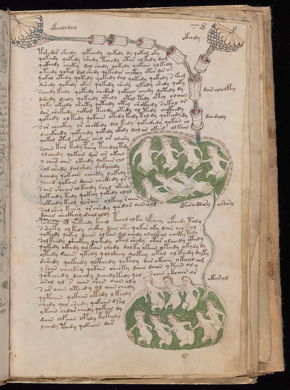 El misterioso manuscrito 'VOYNICH'