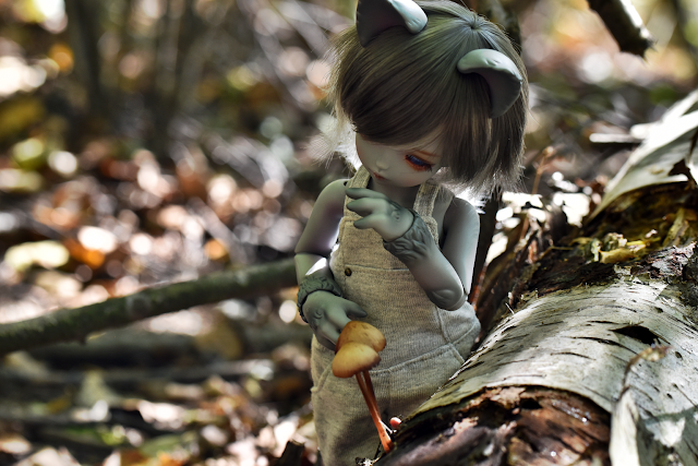 soom teenie gem coyote elf
