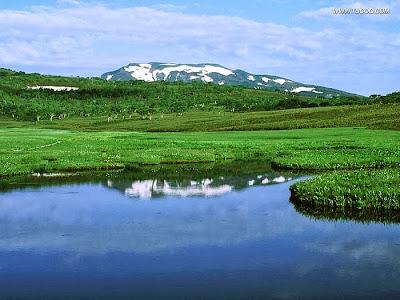 Lush Green Full HD Size Nature Wallpapers Free Downloads Full HD High Res Nature Wallpapers For Laptop