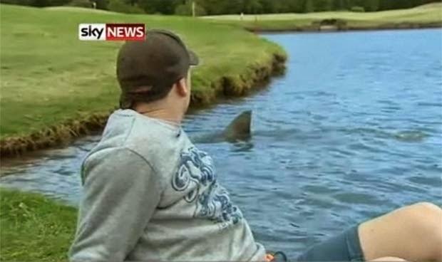 enhanced buzz 23356 1395814193 6 Fotos que provam que a Austrália é um lugar louco